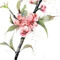 春風拂面桃花馬