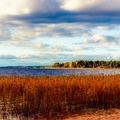 laoqiao321