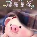 |小花猪_3478