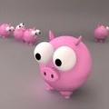 接好孕。猪猪