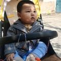 政Zheng